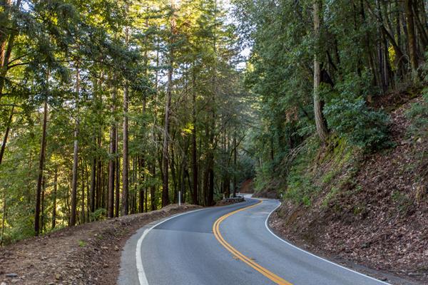 Image result for santa cruz mountains road