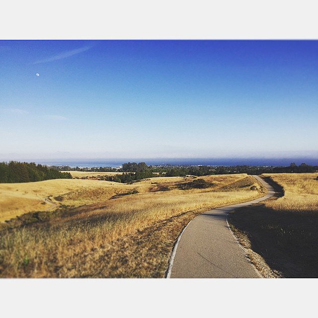 View from UCSC - Photo by @shoheiburns