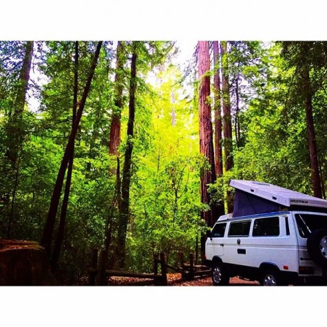 Big Basin Camping - into.the.mystic_