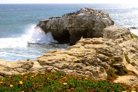 Natural Bridges - sm