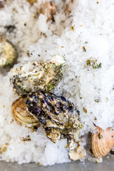 Farm-Mkt-Oysters-e1443570852374