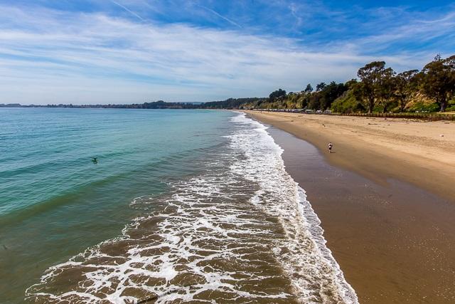 Monterey Bay Seacliff