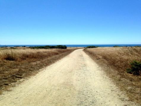 Top 5 Hikes in Santa Cruz County - Visit Santa Cruz County