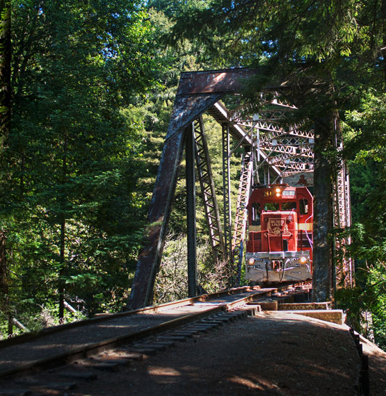 San Lorenzo Valley: Wind Your Way Through The Redwoods