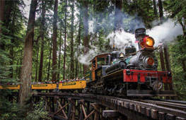 roaring-camp-train