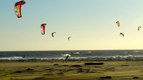 """""""a carnival of brightly-colored kites on an all-you-can-eat buffet of waves"""""""