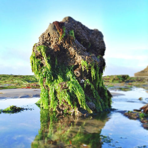 Pleasure Point at low tide by Instagram fan, @gnarchive