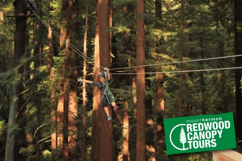 Mount Hermon Redwood Canopy Tour