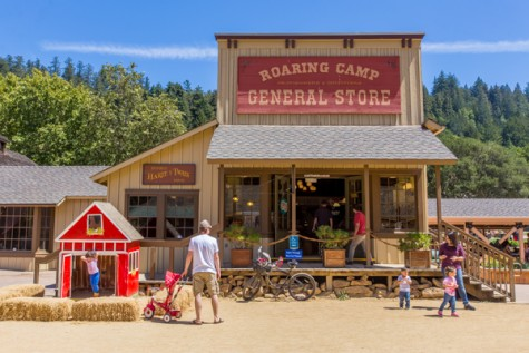Roaring Camp4
