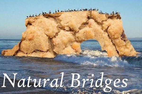 Natural Bridges Cookie