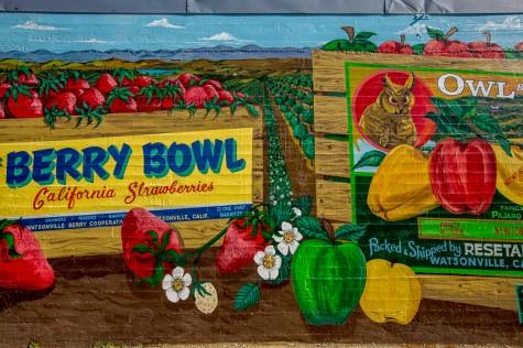Vintage-Crate-Murals-PHOTO-CREDIT-GARRICK-RAMIREZ-e1454644189163