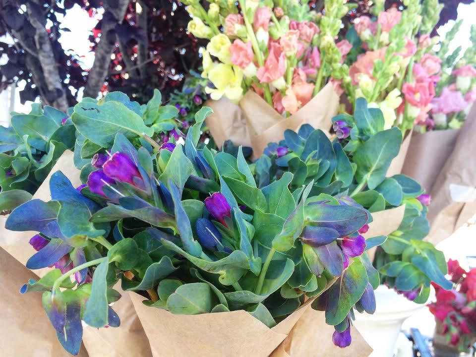 Scotts Valley Farmer's Market flowers