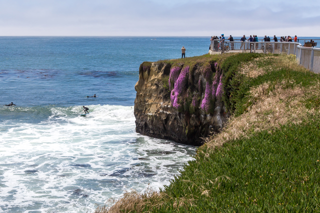 The famed surf spot, Steamer Lane on West Cliff Drive is an excellent spot to post up for some surf watching. This location is for skilled surfers and you are likely to see some waves being caught. Nearby is the Surf Museum and Lighthouse Field State Beach.