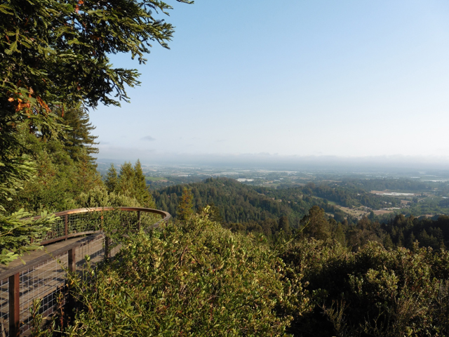 AJ's Point of View is at Byrne-Milliron in Corralitos near Watsonville. This overlook is a great spot to hike to and has sweeping views of Watsonville.