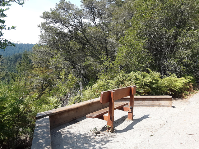 Hikes with a View in Santa Cruz County: Henry Cowell Redwoods State Park is full of valley vistas. The observation bench is great spot to hike to off Pipeline Trail.