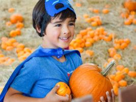 Roaring Camp Railroads Harvest Faire Event Artwork, Young Boy in Pumpkin Patch